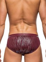 Male Power Dazzle: Insert Bikini Brief, burgundy